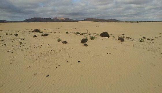 Fuerteventura - Day 3