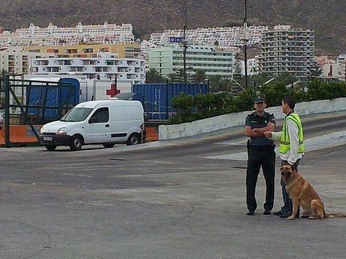 Tenerife - Day 21
