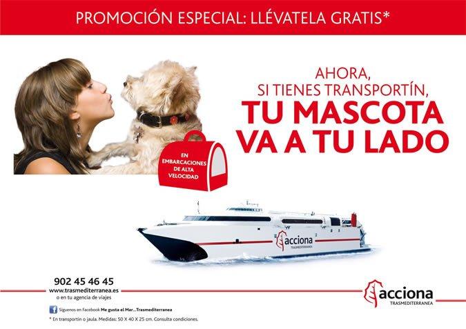 Pets on Ferries