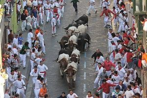 moving-to-pamplona