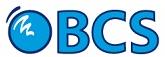 BCS Consultores de Negocio