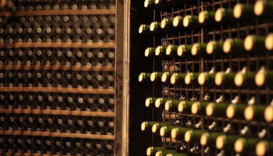 A winery tour in La Rioja