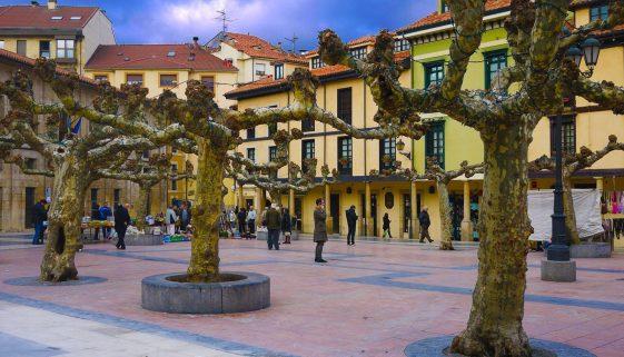 Moving to Oviedo