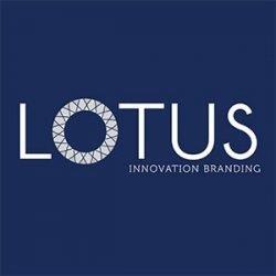 Lotus Agencia de Marketing Online