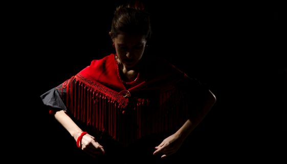 50 per cent discount on Flamenco Experience