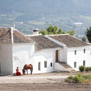 Cortijo Los Lobos, riding holidays