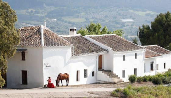 Cortijo Los Lobos, riding holidays