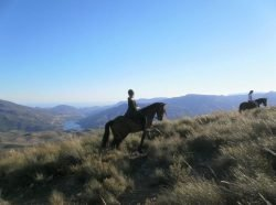 Horse riding and holidays in the mountains